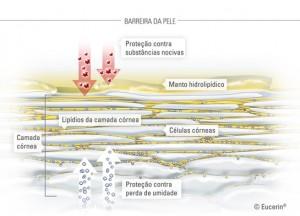 manto-hidrolipidico-responsavel-pela-hidratado-e-protecao-da-pele